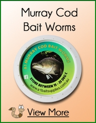 Murray Cod Worms